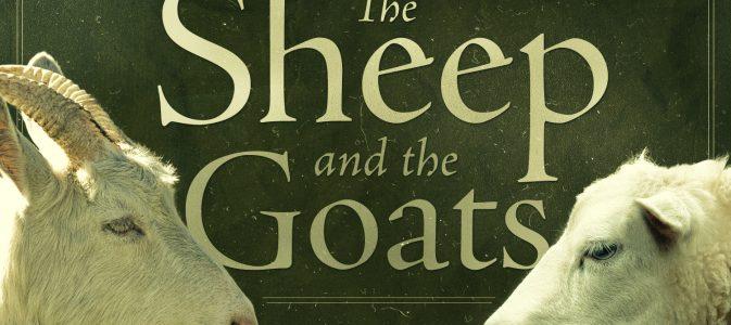 Sheep and Goats (November 18th, 2018)